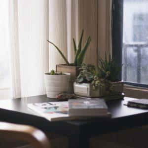 un appartement qui est une residence principale ou un investissement locatif